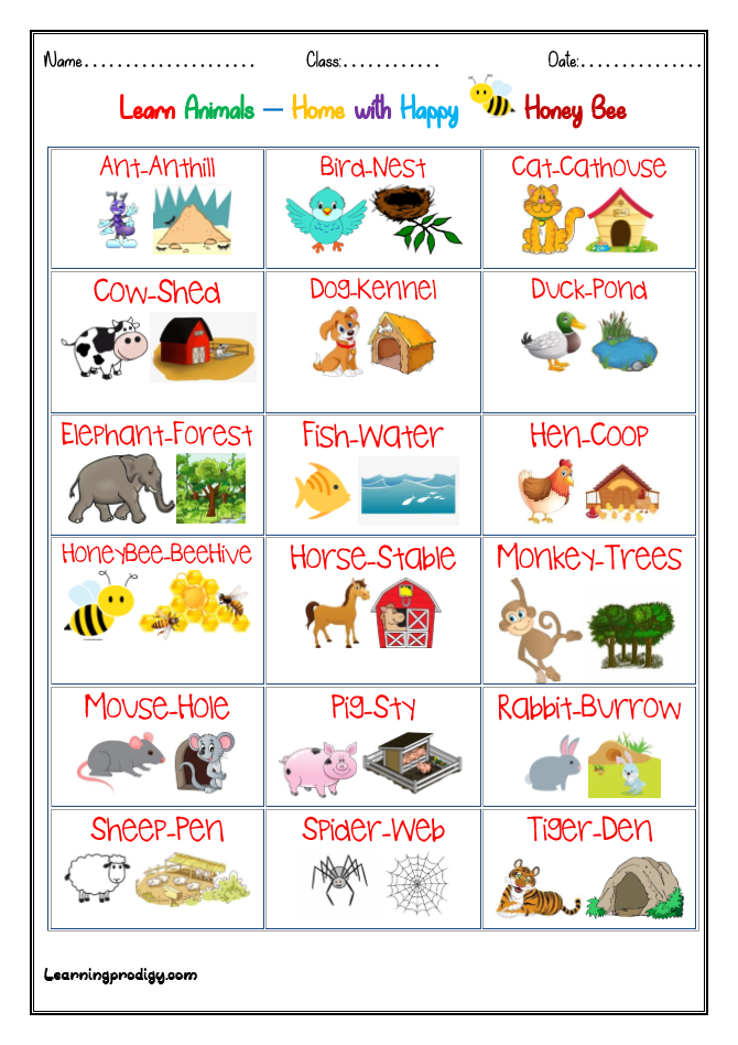 Animals And Their Home Habitat Chart For Preschoolers Learningprodigy Charts