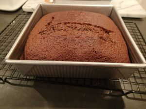 Molasses (American) Gingerbread Baked