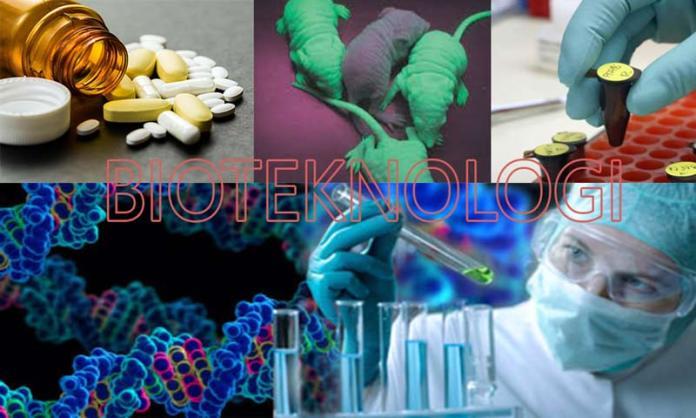 Pengertian Bioteknologi, Contoh, Perbedaan, Macam Bioteknologi