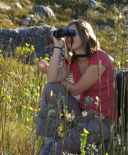 Dr Susan Cunningham birding