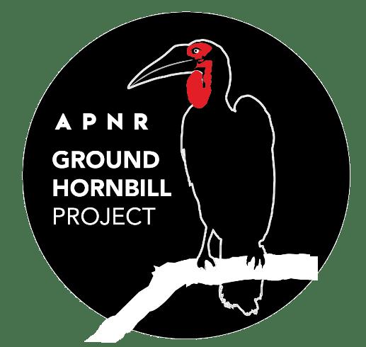 Ground hornbill logo