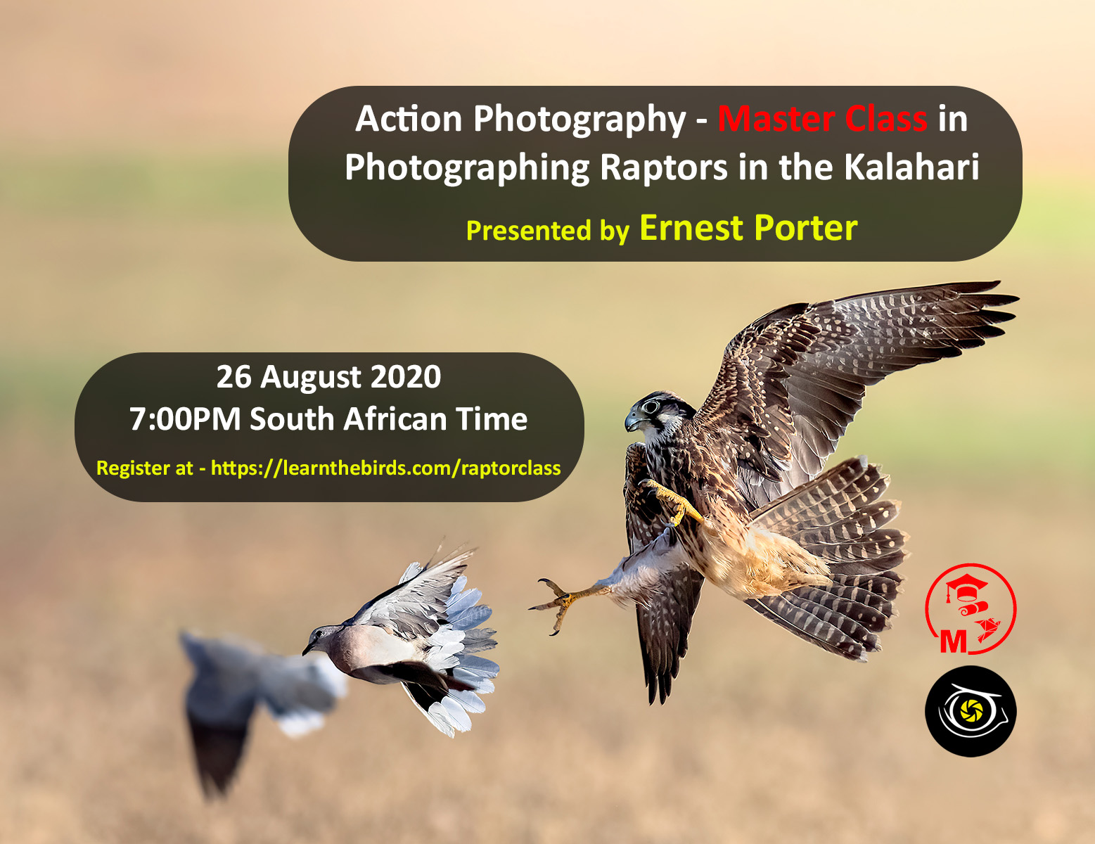Master class in raptor photography