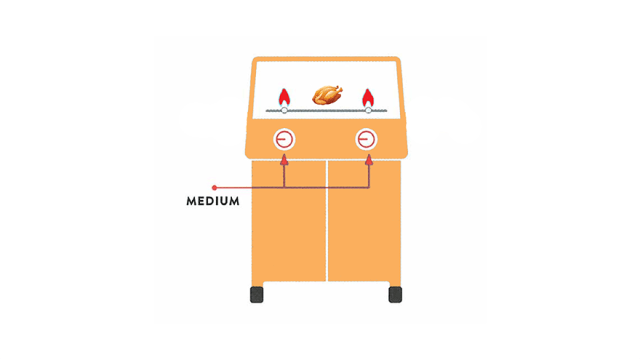 two burner grill with chicken