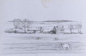 planning sketch of farmyard