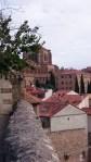 Aussicht auf alte Kathedrale von einem Park aus in Salamanca