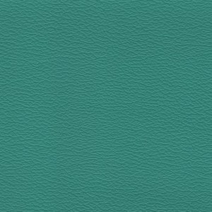 IND8417 China Green Independence Contract Vinyl