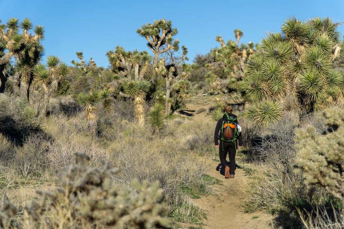 California Riding And Hiking Trail Backpacking Guide Leave