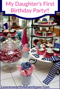 My Daughter's First Birthday Party - Pink and Navy Color Scheme - LeavenworthAdventures.com