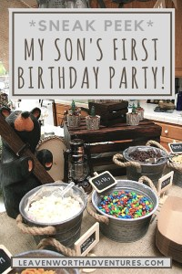 "Sneak Peek of My Son's ""First"" First Birthday Party! Theme: Outdoor Adventure. - LeavenworthAdventures.com"