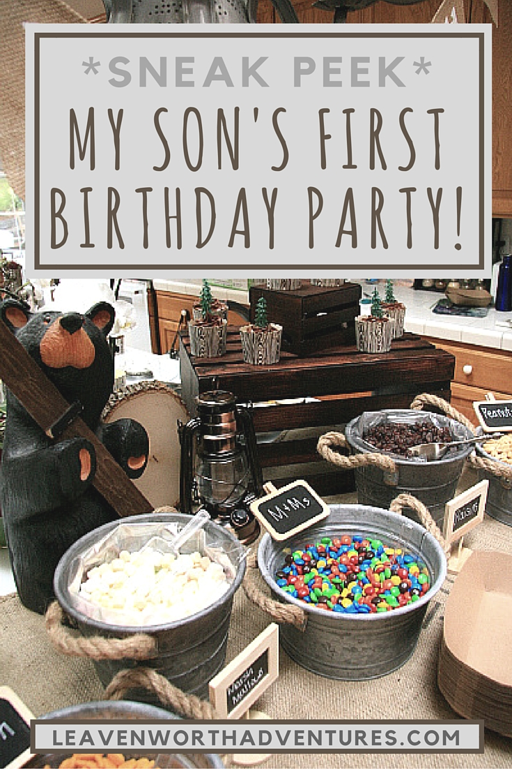 Sneak Peek of My Son's &quot;First&quot; First Birthday... </p srcset=