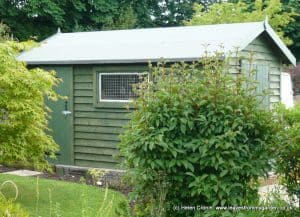 Bespoke shed at Dovewood
