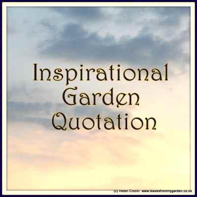 Inspirational Gardening Quote No 6