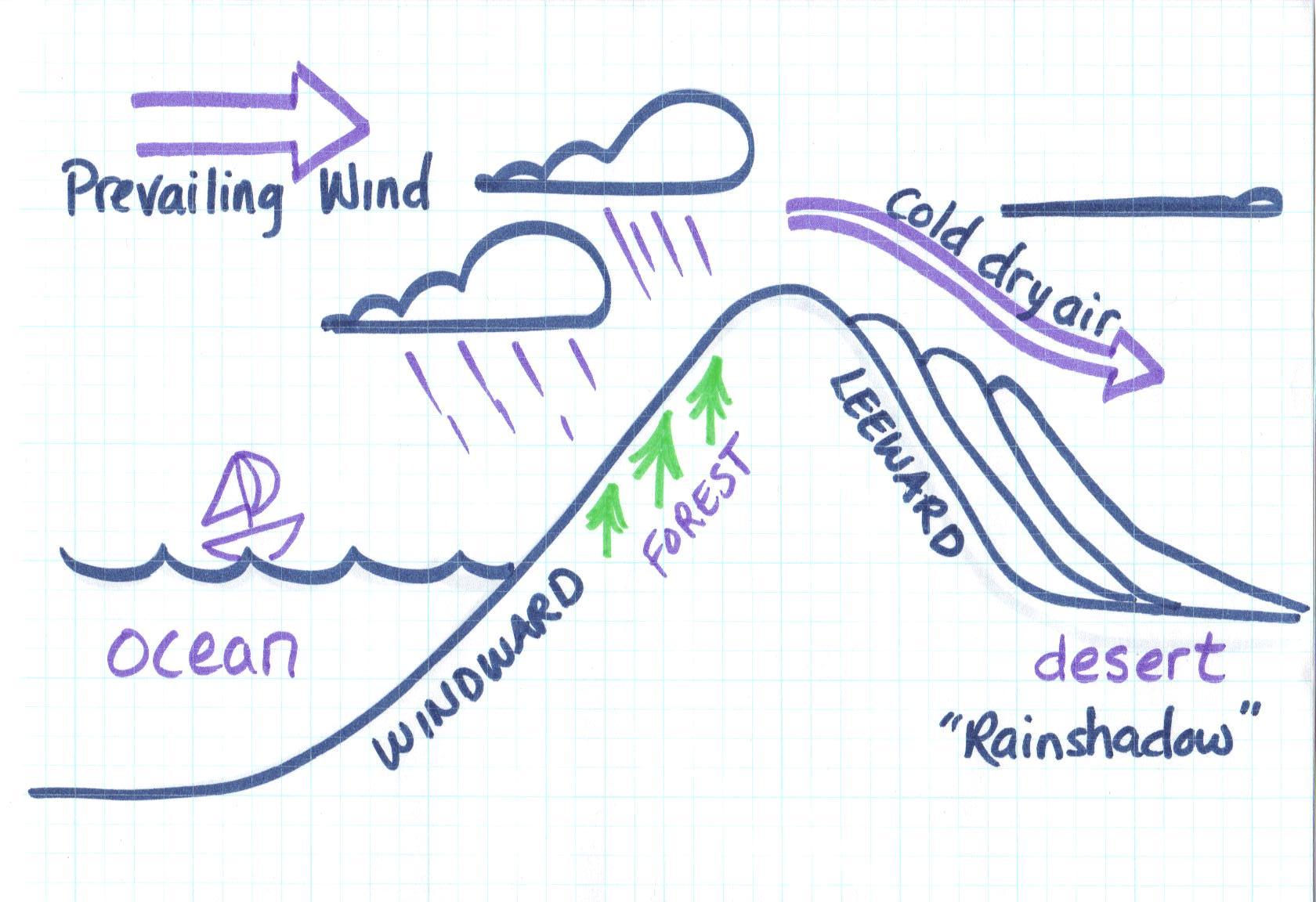 blank venn diagram word document avital 4103 wiring seventh grade homework page / web links