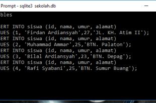 Tutorial Belajar SQLite Perintah Insert