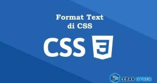 Format Text di CSS