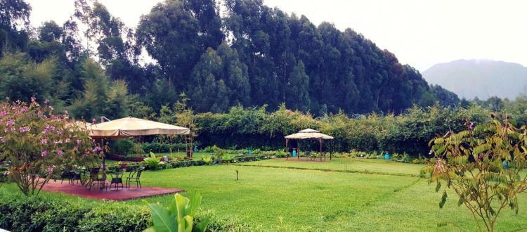 Outside garden at Le Bambou Gorilla Lodge