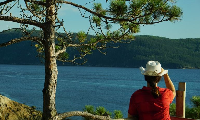 Vue panoramique du Fjord du Saguenay depuis le belvédère de Baie Ste-Marguerite dans le parc national du Fjord-du-Saguenay