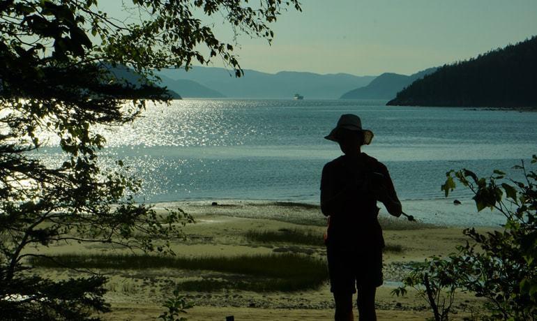 Vue depuis le belvédère de Baie Ste-Marguerite dans le parc national du Fjord-du-Saguenay