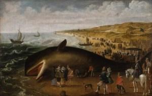 van de velde - whale - le bastart