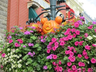 decos-halloween-disneyland-1