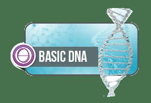 thetahealing basic