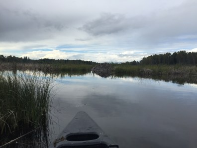 Beaverlodge vom Kanu aus, Fotos: ©Denise Ott
