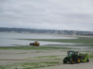 Traktoren im Meer