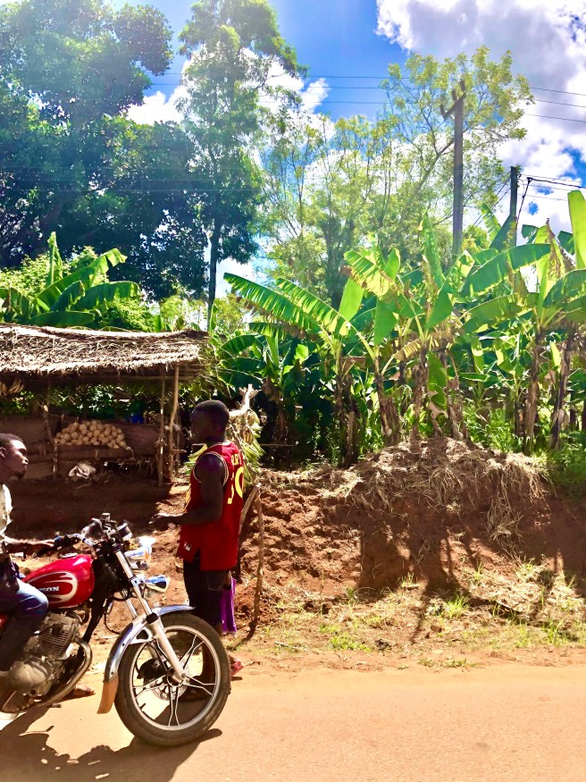 Tansania - Afrika