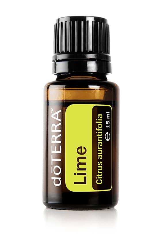 Limette Citrus aurantifolia - Lime