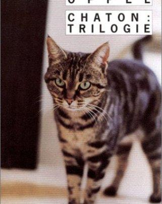 Chaton : Trilogie