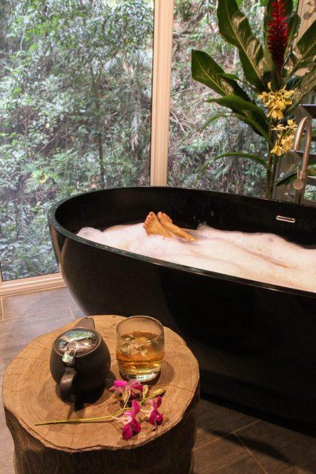 Un petit moment relaxant au Daintree Ecolodge, au milieu de la foret tropicale