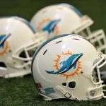dolphins-hlemets