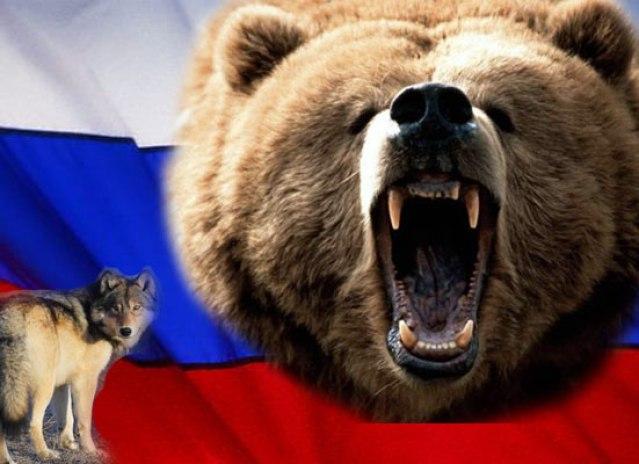 russian-bear.jpg (600×400)