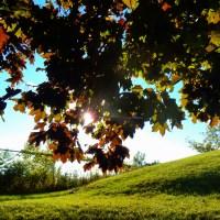 Portraits d'écolos imparfait(e)s : pause estivale
