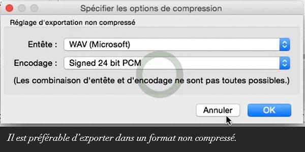 Il est préférable d'exporter dans un format non compressé.