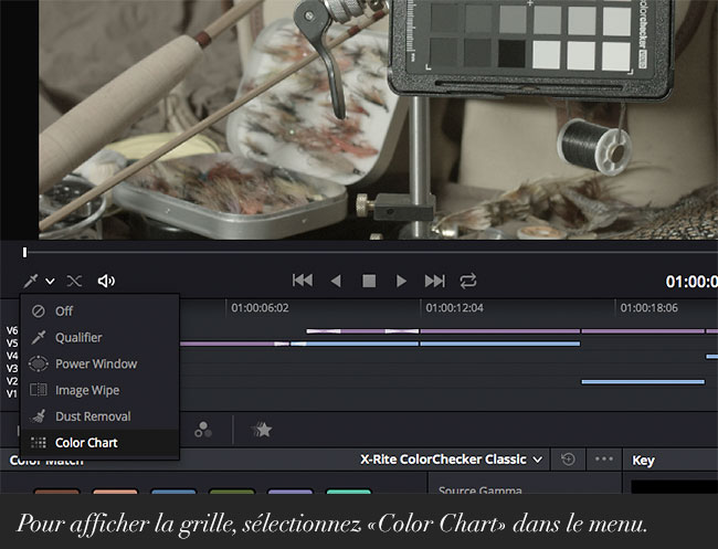 Pour afficher la grille, sélectionnez «Color Chart» dans le menu.