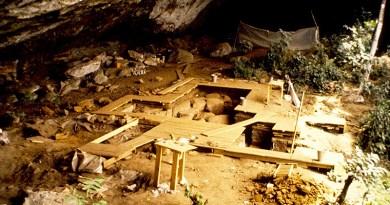 Découverte d'un ADN vieux de 8 000 ans - Le blog du hérisson