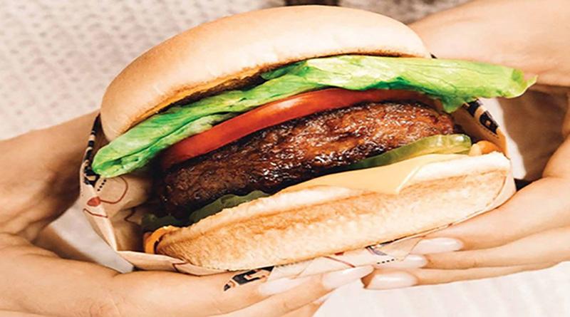 Fausse viande : une bonne alternative ? - Le blog du hérisson