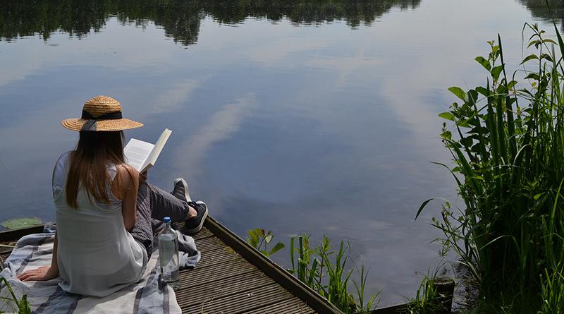 Les livres à ne pas louper cet été - Le blog du hérisson