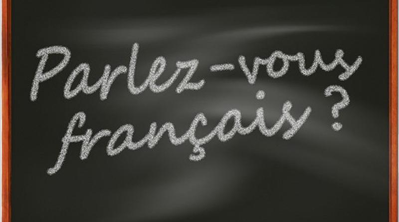 Apprendre le Français Langue Étrangère - Le blog du hérisson