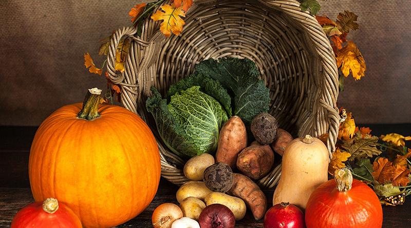 Objectif d'automne : une immunité au top ! - Le blog du hérisson