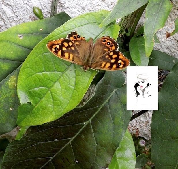 Découvertes beauté de juin- la provinciale