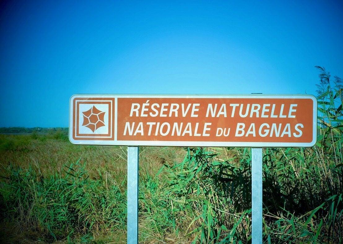 La découverte du bassin de Thau en Occitanie