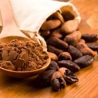 Les bienfaits du cacao : super antioxydant