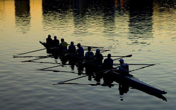 Le coaching, un art au service du développement des managers et de leurs équipes
