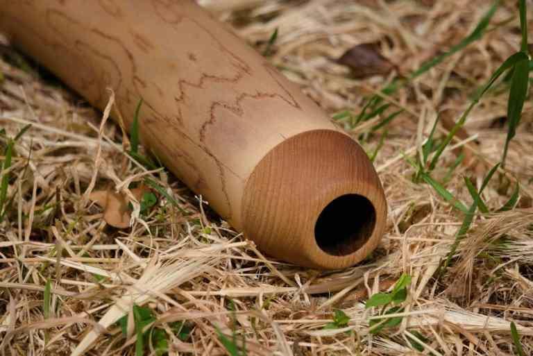 didgeridoo-france-occitanie-gard-chene