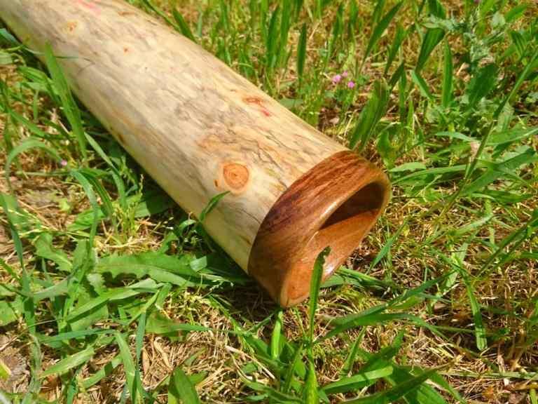 didgeridoo-musique-gard-occitanie