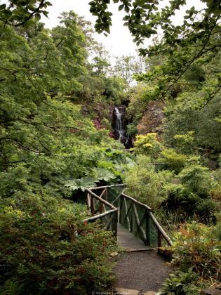 Le jardin d'eau de Dunvegan
