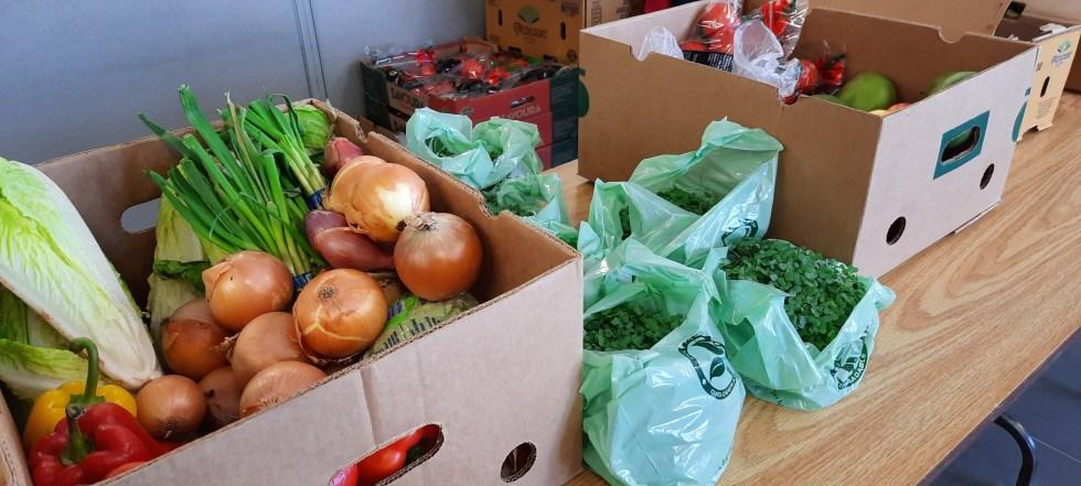 Préparation de la distribution alimentaire avec des beau légumes