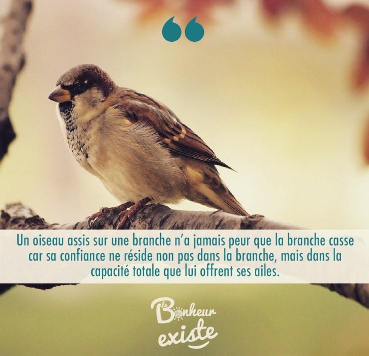 Un-oiseau-n'a-jamais-peur-que-la-branche-casse-car-sa-confiance-ne-réside-non-pas-dans-la-branche-mais-dans-la-capacité-totale-qui-lui-offrent-ses-ailes.JPG